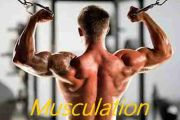 Musculation Fiche variété des EXOS